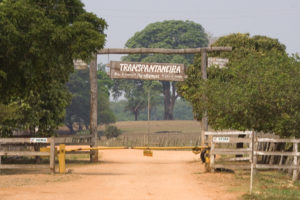 Gate to the Pantanal Transpantaniera by Peg Abbott