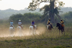 Posada Horseback Ride by Mark Wetzel