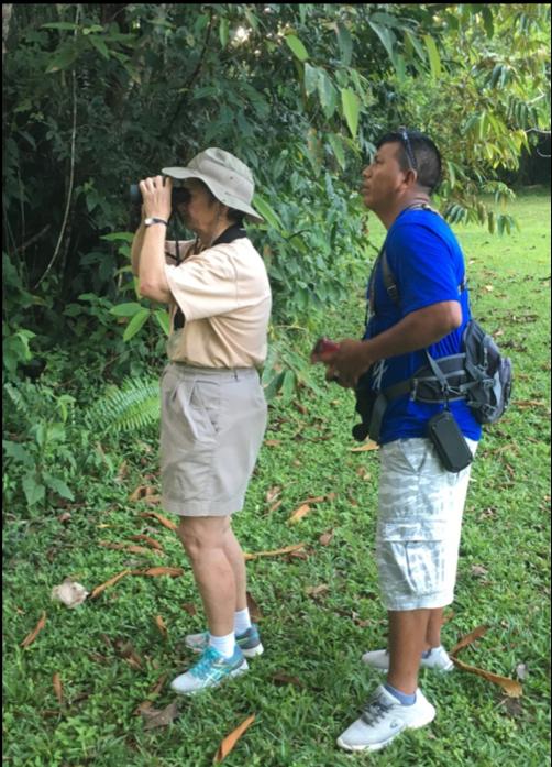 Southern Belize nature Tour
